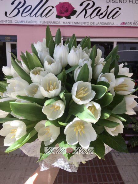 Pasión por tulipán blanco