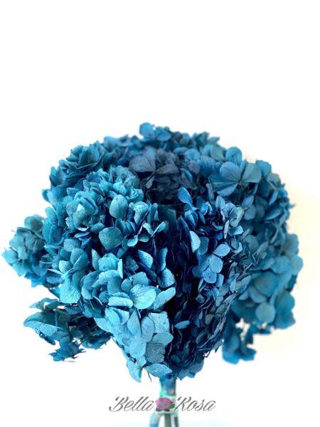 hortensia preservada azul